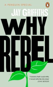 Why Rebel