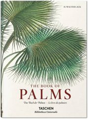 Book of Palms