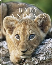 Michael Poliza, Baby Animals