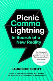 Picnic Comma Lightning