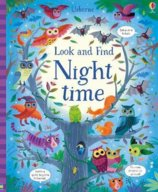 Look and Find: Night time