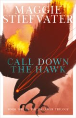Call Down the Hawk: The Dreamer Trilogy 1