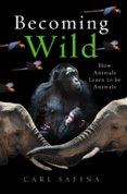 Becoming Wild : How Animals Learn to be Animals