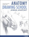 Anatomy Drawing School 2 animals