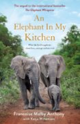 The Elephant in My Kitchen