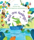 Lift-the-Flap First Questions and Answers What are feelings