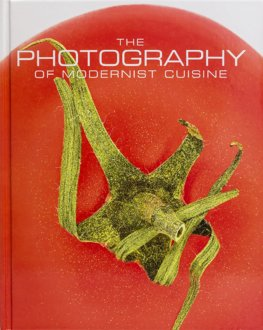 Photography of Modernist Cuisine