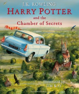 Harry Potter And The Chamber Of Secrets Illustrated
