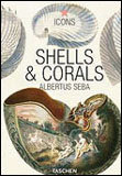 Seba, Shell and Corals